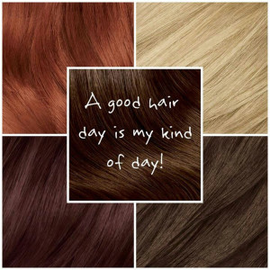 back gallery for hair quotes source http quoteko com quoteshair html