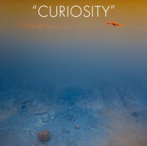 Quotes_Curiosity2
