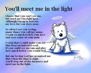 When one of our dogs passes over Rainbow Bridge, we get comfort from ...