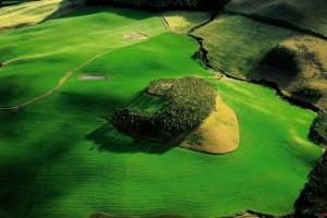 Yann Arthus-Bertrand http://www.thextraordinary.org/yann-arthus ...
