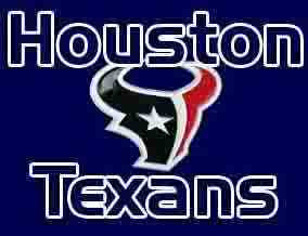 houston texans Image