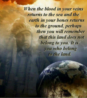 Cherokee Indian sayings