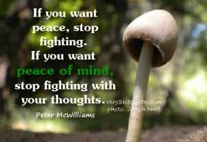 want peace, stop fighting. If you want peace of mind, stop fighting ...