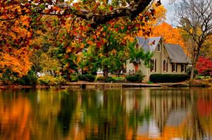 Bucks County Pa Fall Foliage