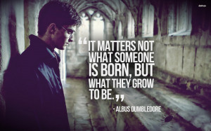 Movies Quote Harry Potter Daniel Radcliffe