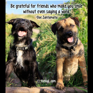 Be grateful for friends who make you smile without even saying a word ...