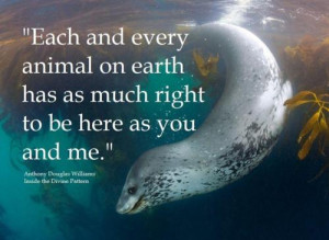 Each And Every Animal On Earth