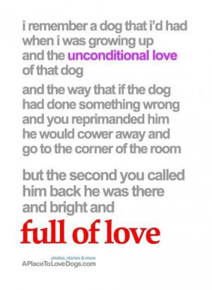Quotes about unconditional love the unconditional love of that dog a ...