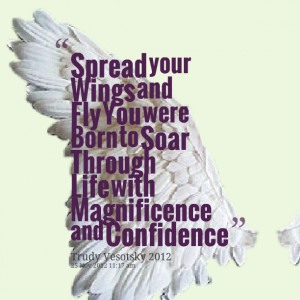 Quotes Picture: spread your wings and fly you were born to soar ...
