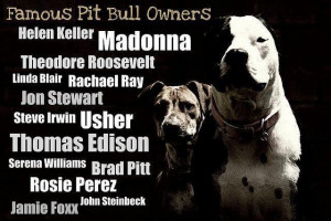 Pitbull Quotes Famous pitbull owners