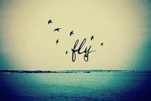 beautiful, fashion, fly, girl, live free, love, quote, young