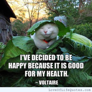 Voltaire-quote-on-being-Happy.jpg