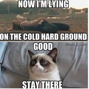 Grumpy Cat Quotes Disney QuotesGram