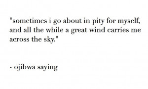 ... all the while a great wind carries me across the sky. ~ ojibwa saying