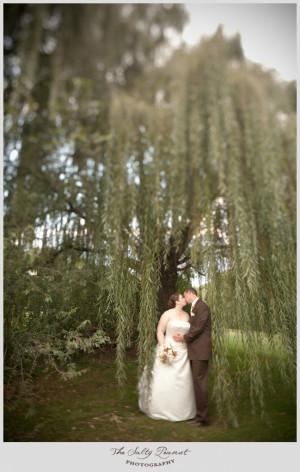 willow trees wedding portrait