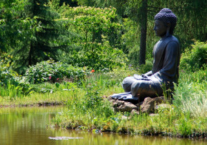 Lord Buddha Meditation Statue Nature