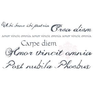 Wall Deco Latin phrases