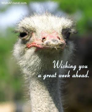 Wishing You A Great Week Ahead