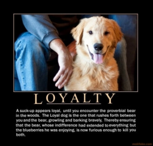 Loyalty dog