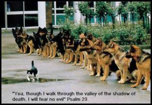 Yea Though I Walk Through the Shadow of Death