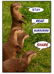 Four otters curious about funny inspirational quotes