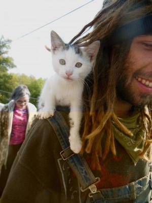 ... fun rasta sweet kittens pets dreads Bob Marley dreadlocks reggae