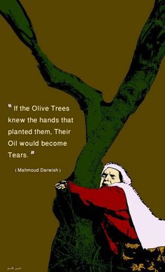 If the olive trees knew the hands that planted them, their oil would ...