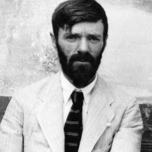 Best D. H. Lawrence Quotes Quotations