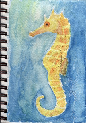 Facts About Seahorses Seahorse