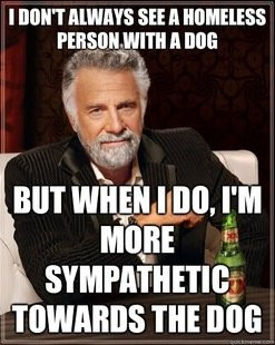 The Most Interesting Man In The World Funny Quotes The most ...