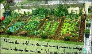 My Favorite Quotes on Gardening