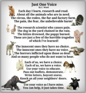 animal poem by animalsrights 2012 07 03 10 40 50
