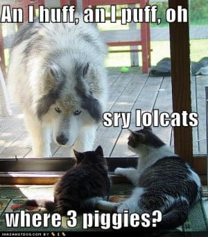 big bad wolf and lol cats