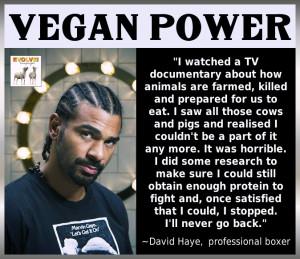 Vegan Stories: Professional Boxer David Haye