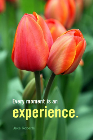 ... quote #quoteoftheday Every moment is an experience. - Jake Roberts