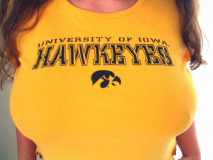 iowa hawkeyes are the well iowa state cyclones they are