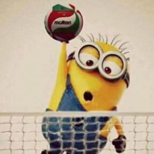 Minion-Volleyball.jpg