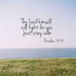 The Lord himself will fight for you. Just stay calm. Exodus 14:14