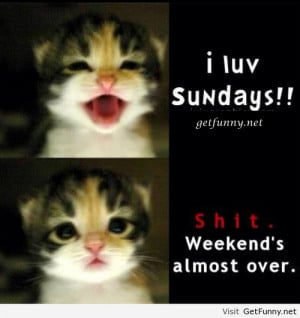 luv sundays - Funny Pictures, Funny Quotes, Funny Memes, Funny ...