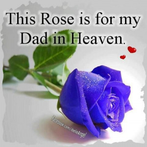 This Rose is for My Dad in Heaven