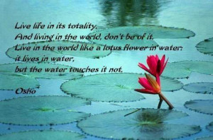 """... the water; it lives in water, but the water touches it not. """" ~ Osho"""