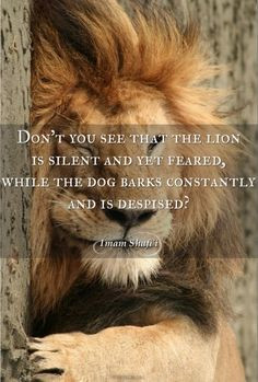 Lion Love Quotes