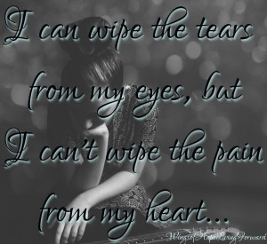 can wipe the tears from my eyes but i can t wipe the pain from my ...