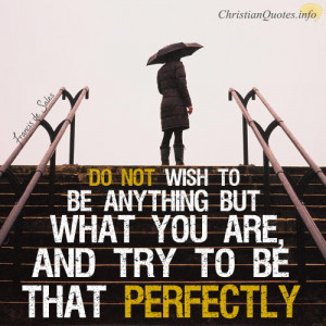 Francis de Sales Quote – Not Wishing To Be Anything But What You Are