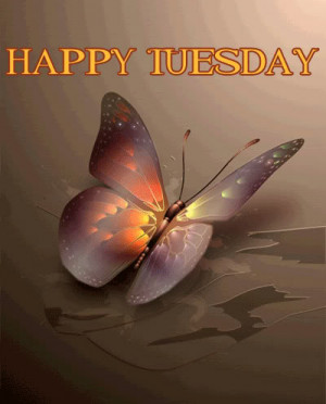 Happy Tuesday Butterfly