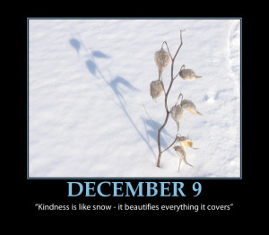 Funny Snow Quotes Sayings