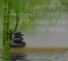 Massage = Equanimity Professional Massage Therapy 1812 Augusta Highway ...