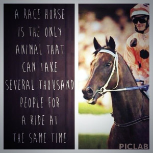 Best horse racing quote EVER!great fun in this sports.both emotional ...