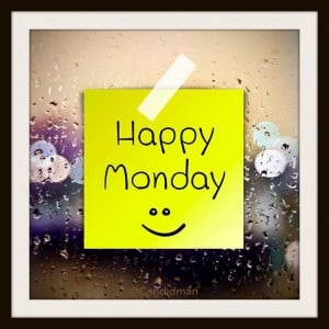 happy monday morning happy monday from fidelity happy monday happy ...