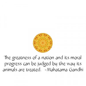 ... Quotes   stop animal cruelty quotes. Animal Rights Quotes Gandhi